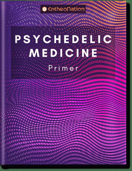 Psychedelic Medicine Primer eBook Cover