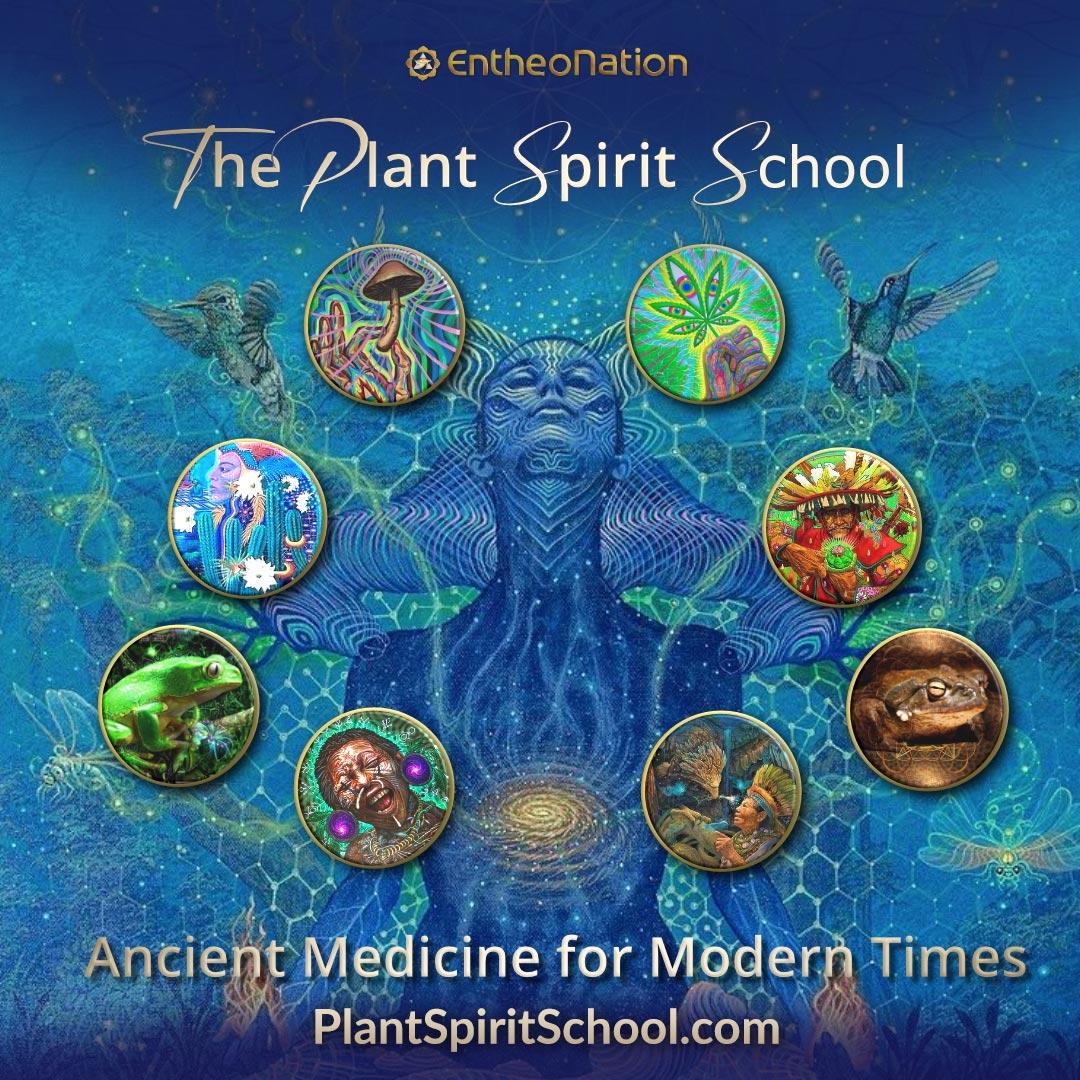 Plant_Spirit_School_Square